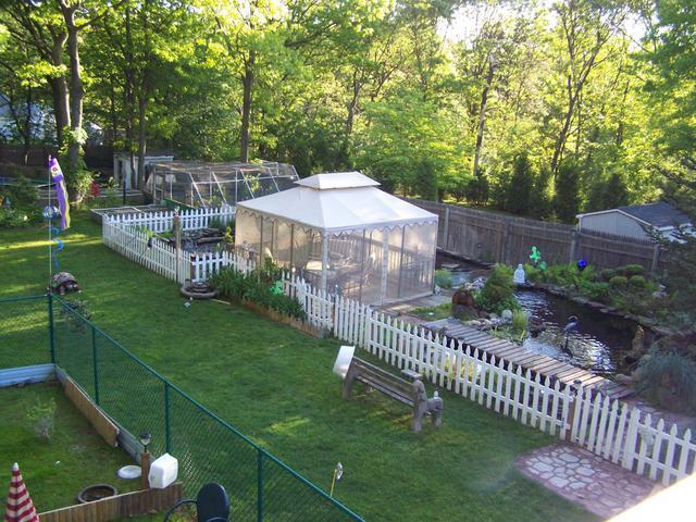 - Backyard Ponds May